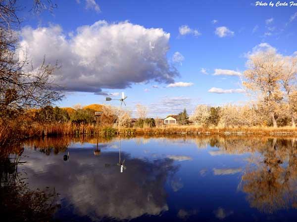 Thomas Preserve provides prime birding habitat